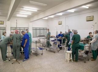 Projeto Castração cirúrgica de cães e gatos de tutores carentes da região metropolitana de Umuarama